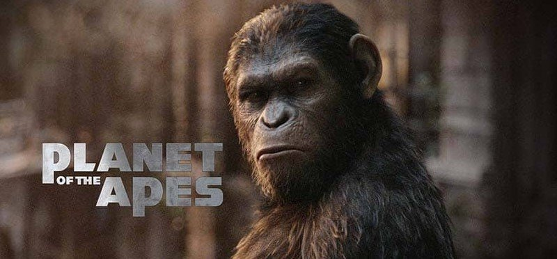 NordicBet Planet of the Apes