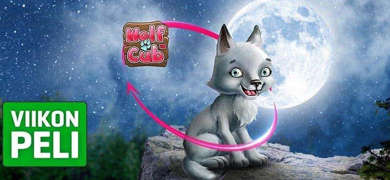 NordicBet Wolf Cub