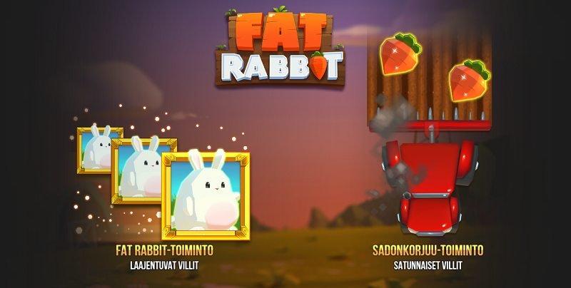 fat rabbit erikoistoiminnot