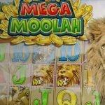Mega Moolahissa 19 miljoonan potti – pelaa heti Gutsilla!