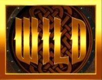 Vikings Go Wild wild-symboli