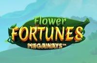 Flower Fortunes Megaways kolikkopeli