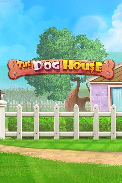 dog_house_kolikkopeli